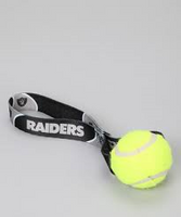 Oakland Raiders Tennis Ball Dog Toy