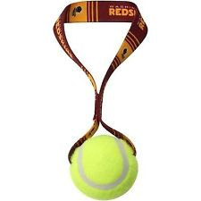 Washington Redskins Tennis Ball Dog Toy