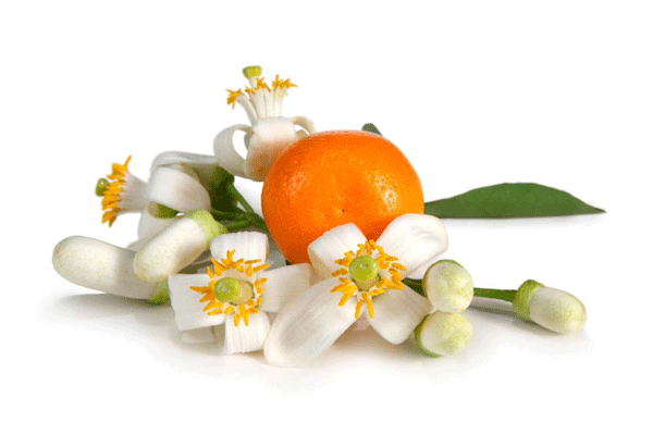 Orange Flower Extract