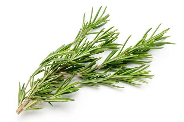 Rosemary Distillate