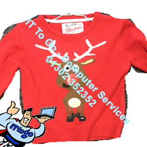 Rudolf Childrens Christmas Jumper - IT To Go - Computer Services
