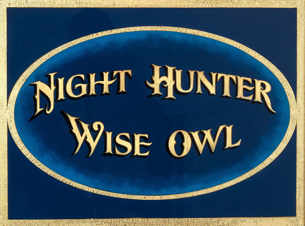 Night Hunter - Wise Owl