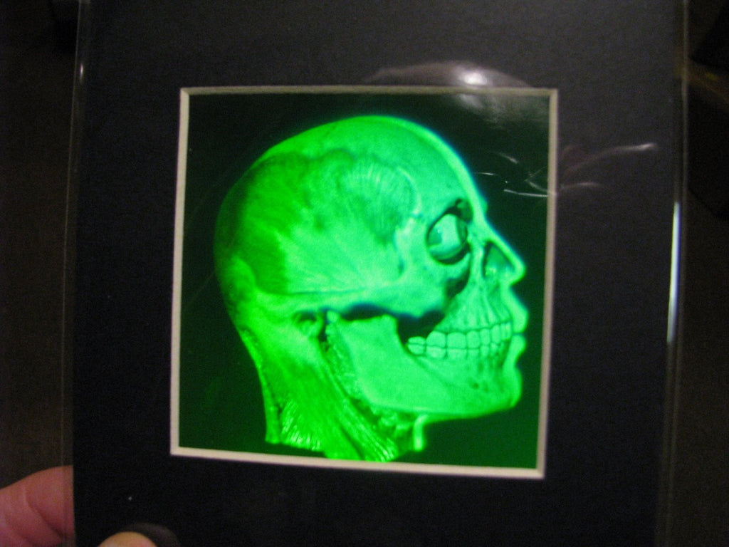 Brain/Skull Matted Hologram Picture, Collectible Polaroid Photopolymer Film