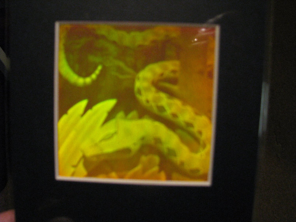 Snake Matted Hologram Picture, Collectible Polaroid Photopolymer Film