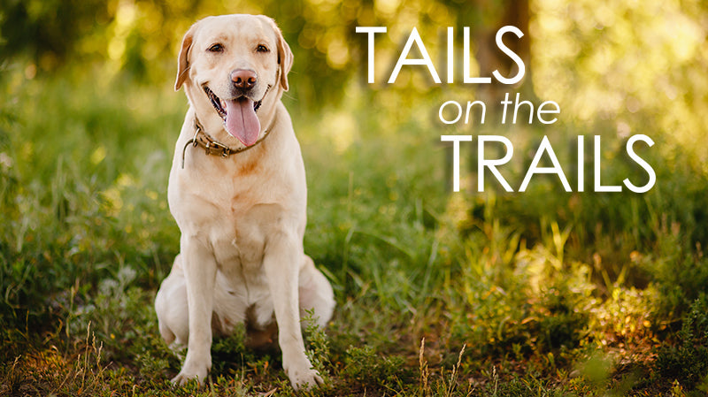 Tails on the Trails 2021