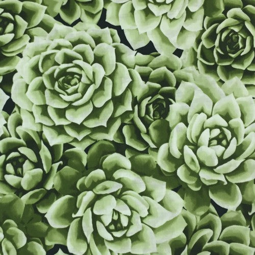 6 Foot Twin Green Succulents - Lifetime Sensory Solutions