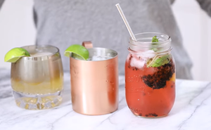 The Gin Moscow Mule - Gin Gin Mule and Other Spinoff Cocktail Recipes