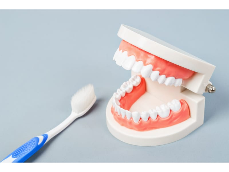 Dentures with a blue and white toothbrush