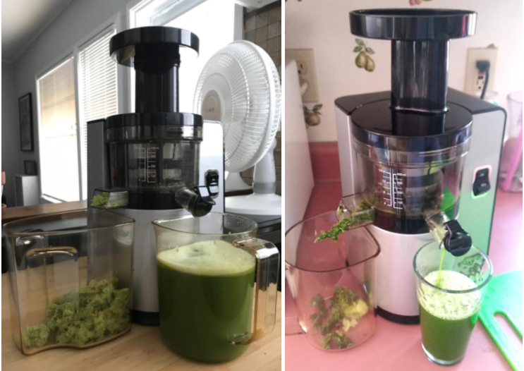 16 Best Celery Juicers