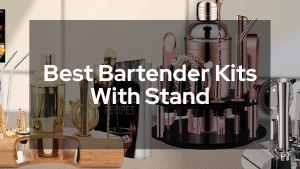 Best Bartender Kits With Stand