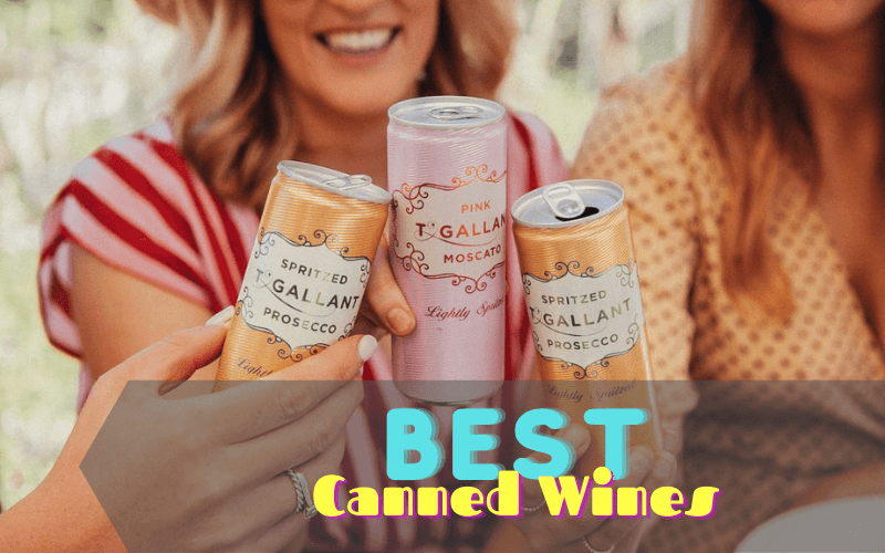 Best Canned Wines You Can Drink Anywhere