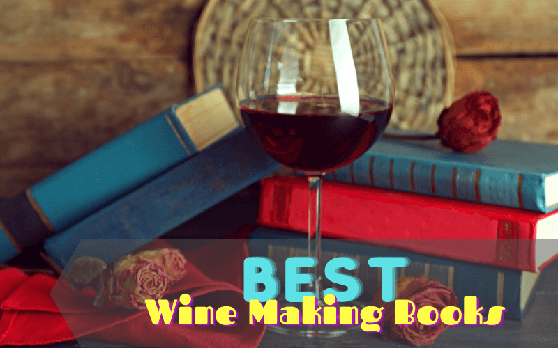 Best Wine Making Books For Beginners This 2021