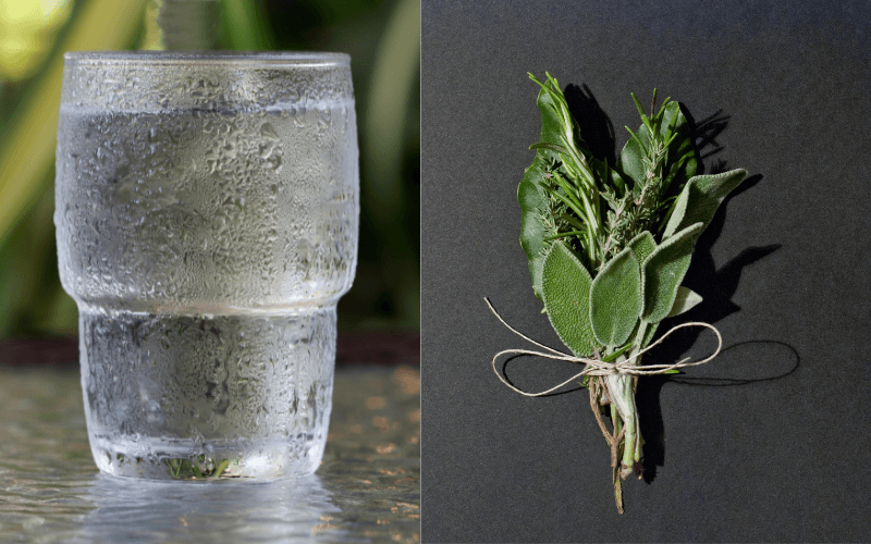 Glass of water and herbs