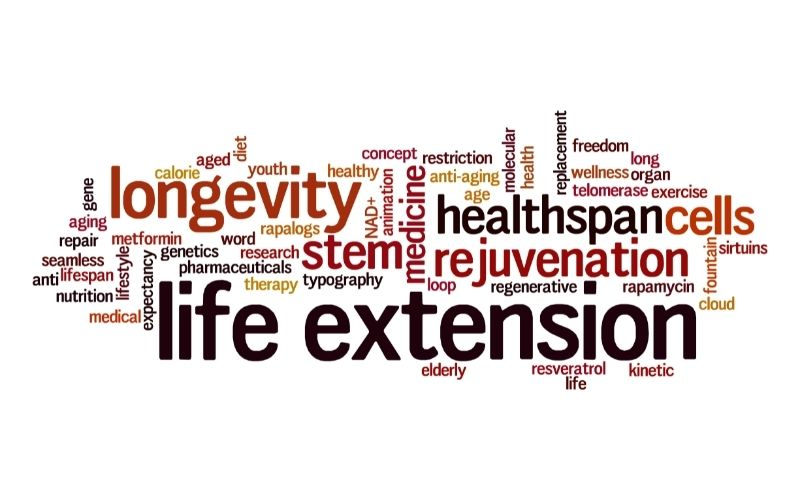 Life Extension Word Cloud Typography