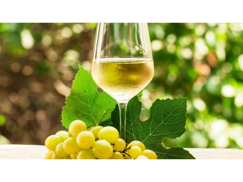 A glass of light white wine with chardonnay grapes