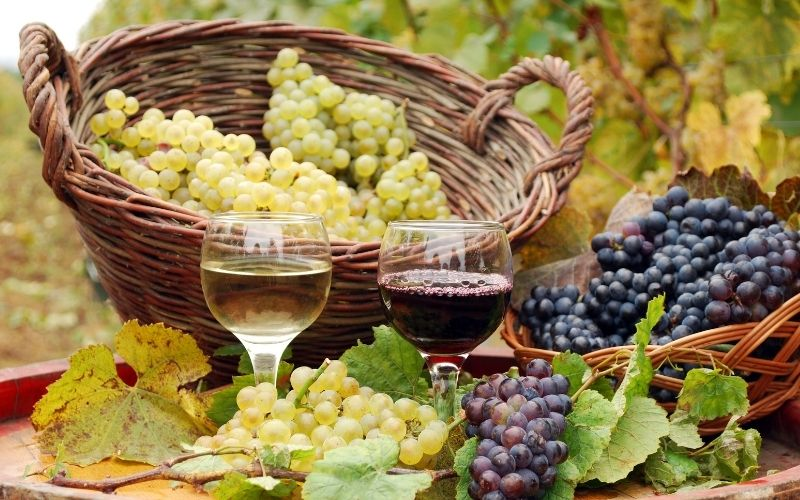 Red and White Wine with Grape