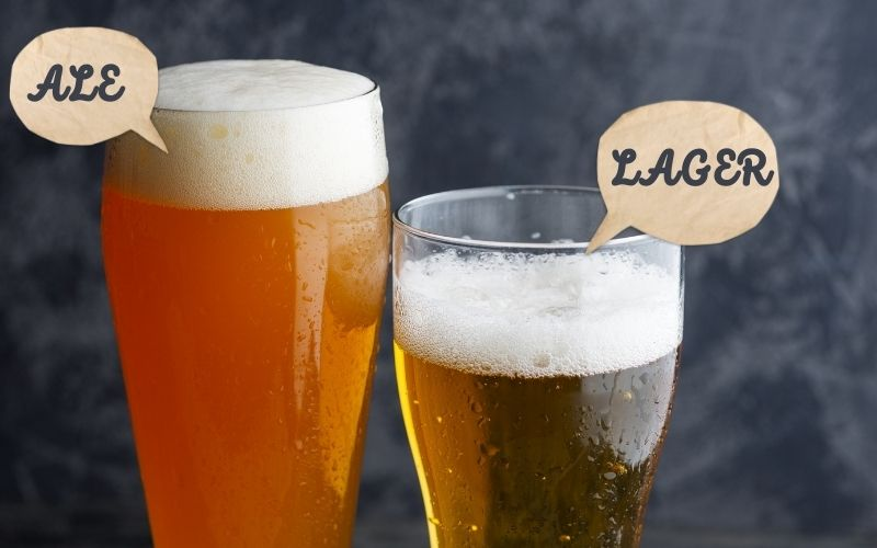 Ale Vs. Lager: What Are The Differences And Similarities?