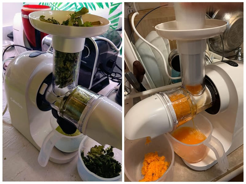 CalmDo Slow Juicer Extractor with Ceramic Auger  review