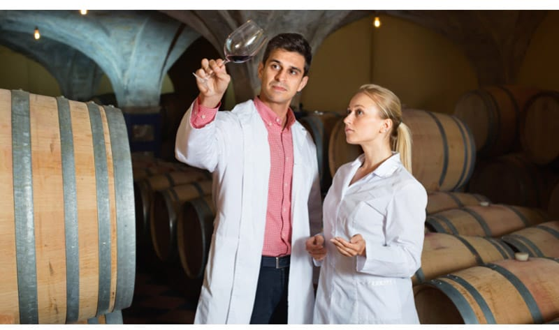 Chemists looking at the aging process of the wine