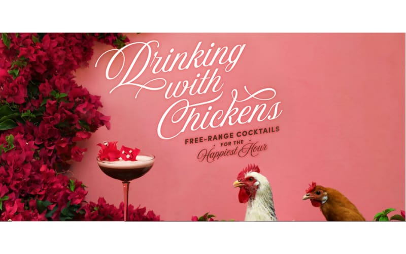 Drinking with Chickens website