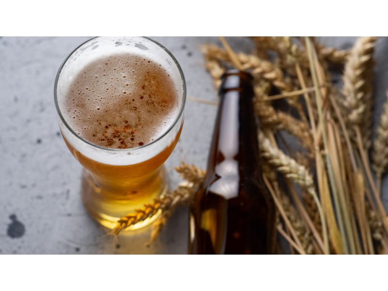 Glass of beer with bottle and wheat on the side