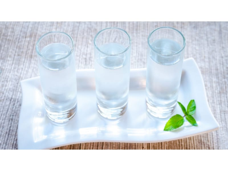 Glasses of vodka with mint
