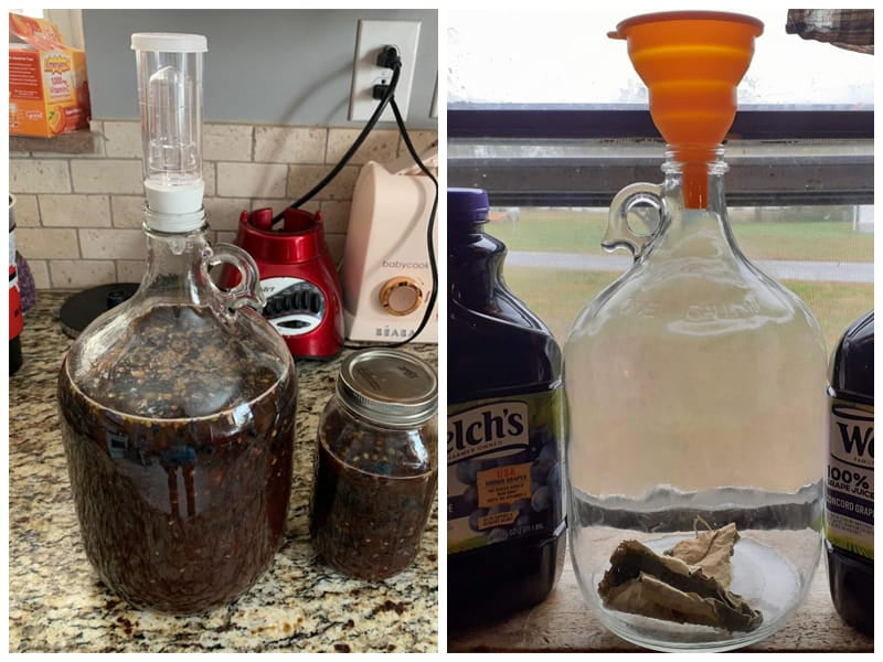 North Mountain Supply NMS 38 Glass Jug review