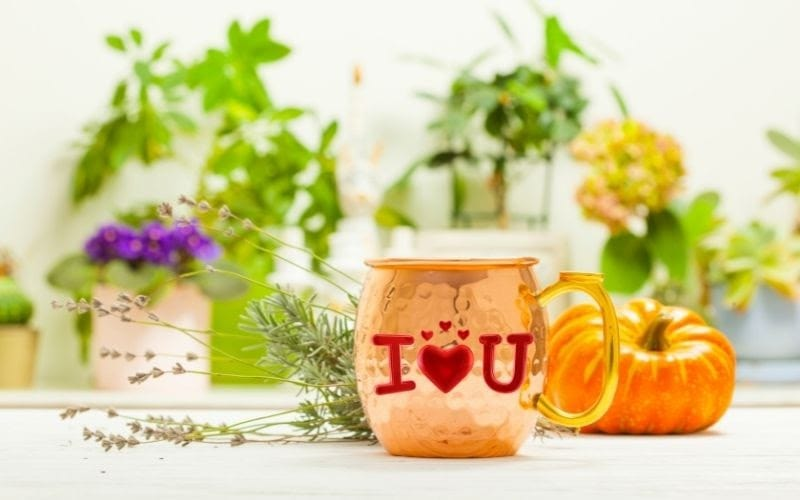 Personalized Copper Mugs: Get The Perfect Gift For Your Loved One