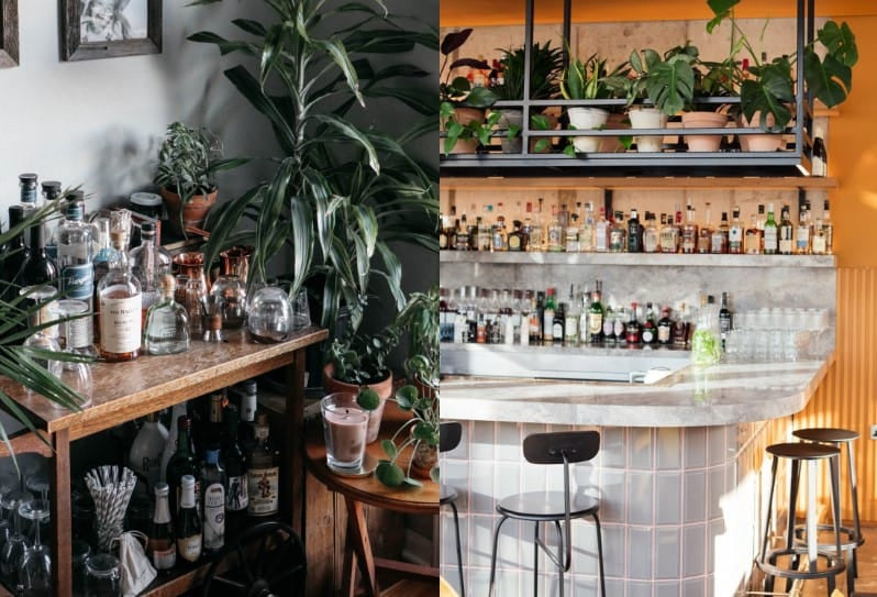 Plants-Inspired Bar - Image by Theanastasiaco.com