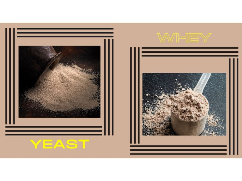 Yeast vs whey