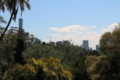 view of the city from botanical gardens