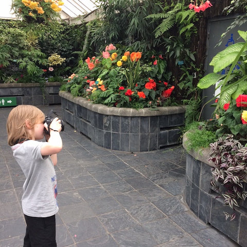 Odin photographing plants at botanical gardens