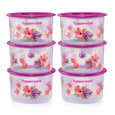 Tupperware Singapore | Garden Blooms One Touch Topper Junior (6) 600ml