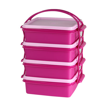 Tupperware Singapore | Small Goody Box with Cariolier (4) - Pink