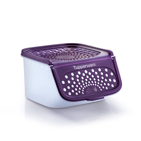 11152570 Garlic N All (1) 2.3L - Purple | Tupperware Singapore