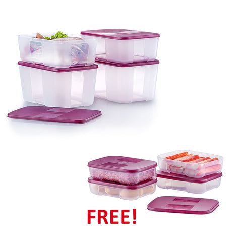 FreezerMate Medium Set | Tupperware Singapore