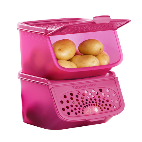 Garlic N All Keeper (2) 2.3L - Pink | Tupperware Singapore