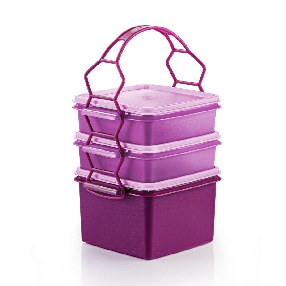 11156713 Triffin Delight Set | Tupperware Singapore