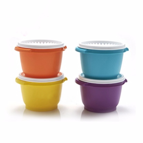 Tupperware Singapore | 20oz Touch Canister (4)