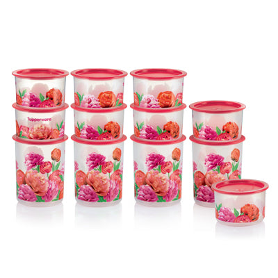1113 5035 - Blooming Peonies One Touch Set