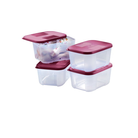 Tupperware Singapore | FreezerMate Small II (4) 650ml