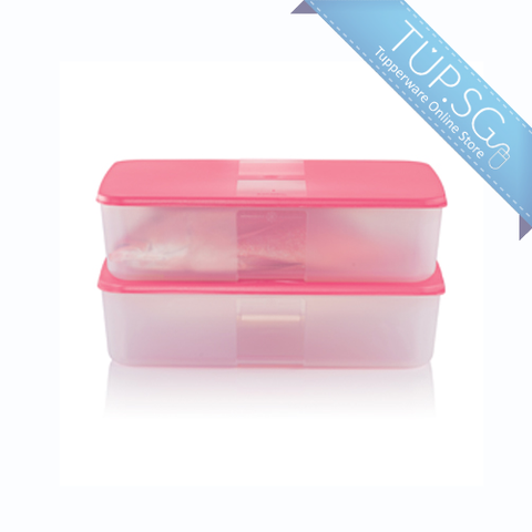 Tupperware Singapore | FreezerMate Large II (2) - 3.1L