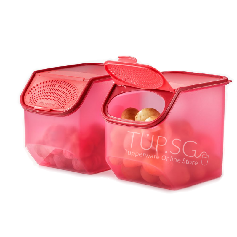 Tupperware Singapore | Garlic N All Large Set (2) 5.5L