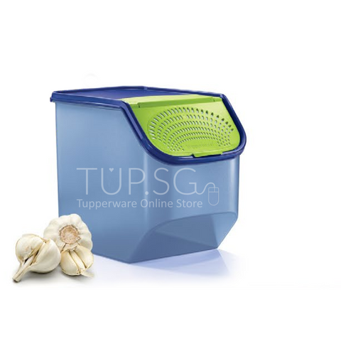Tupperware Singapore June 2020 | Garlic N All (1) 5.5L