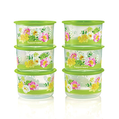 Floral Raya One Touch Topper Junior (6) 600ml