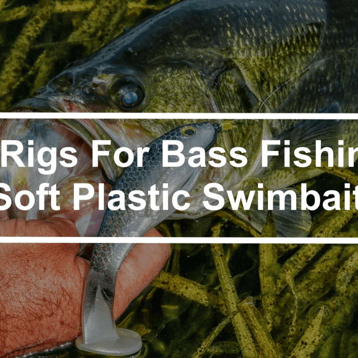 Top 3 Rigs For Bass Fishing With Soft Plastic Swimbaits