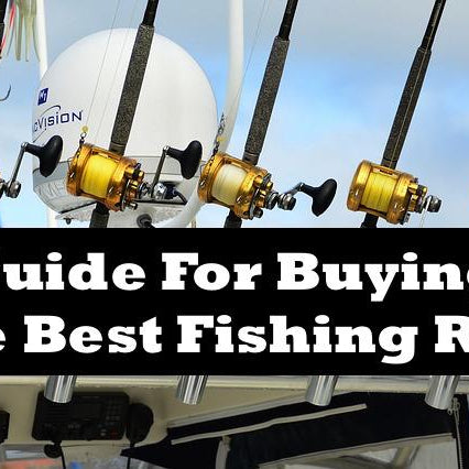 Guide For Buying The Best Fishing Reel