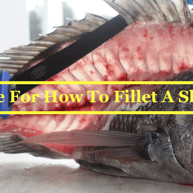 Best Guide For How To Fillet A Sheepshead