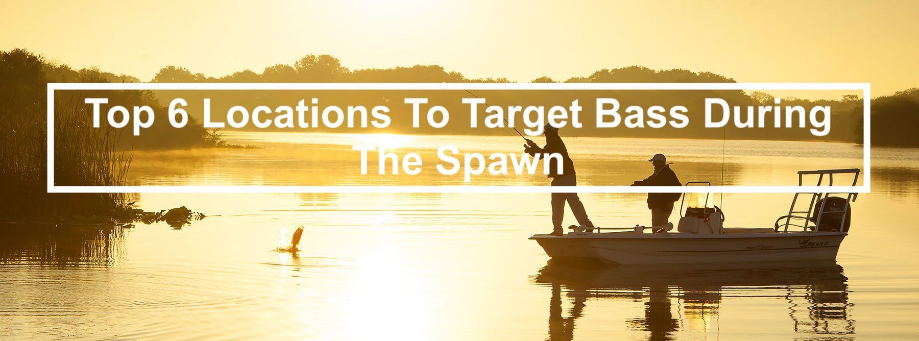 Top 6 Locations To Target Bass During The Spawn
