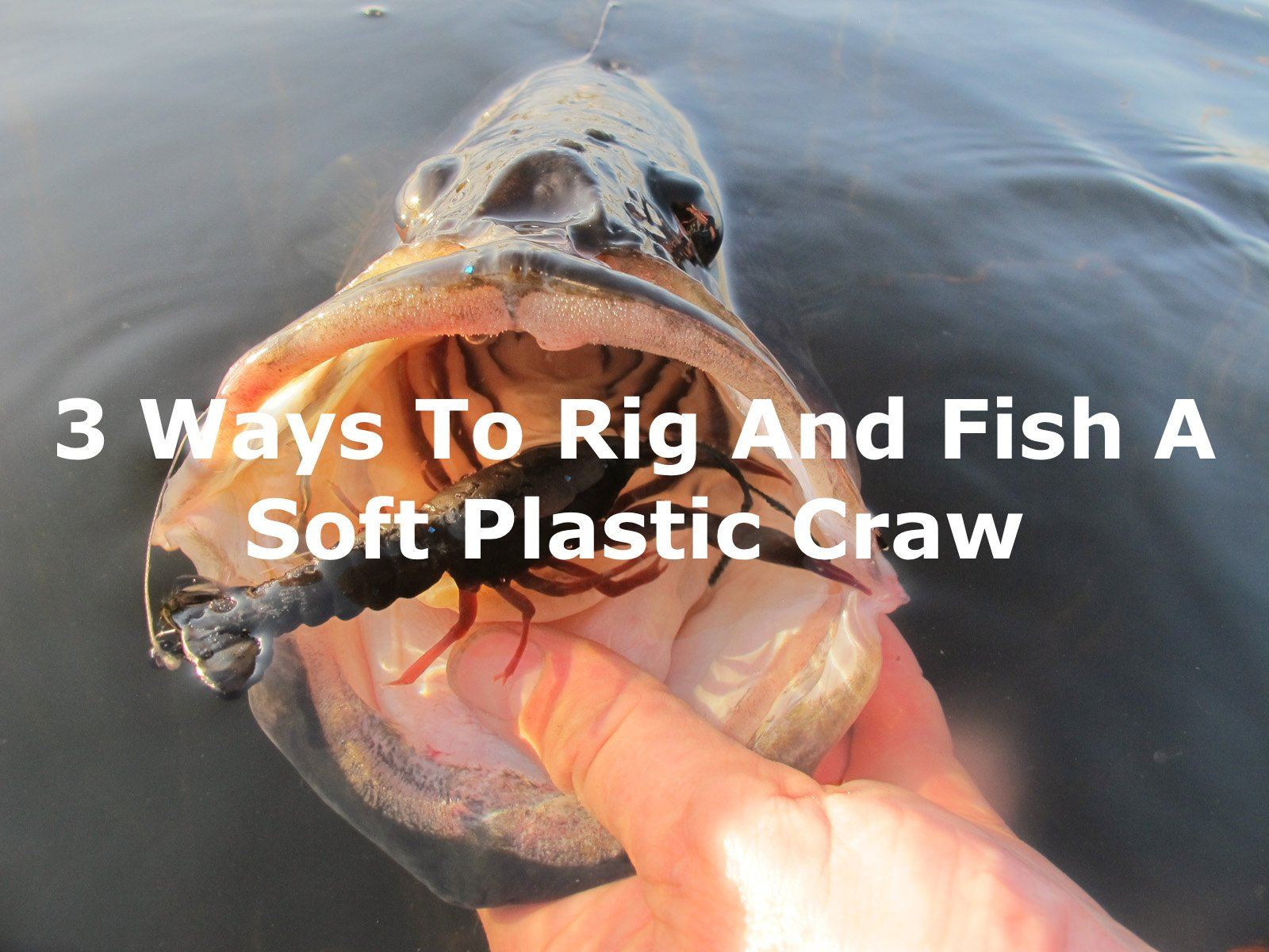 3 Ways To Rig And Fish A Soft Plastic Craw